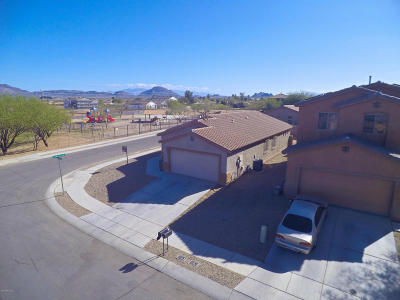 Tucson Single Family Home For Sale: 6645 S Stone Fly Drive