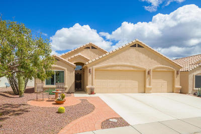 Oro Valley Single Family Home For Sale: 1463 E Ganymede Drive