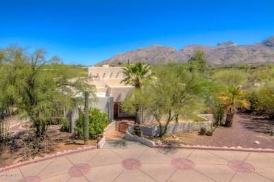 Tucson Single Family Home For Sale: 1501 E Paseo Del Zorro