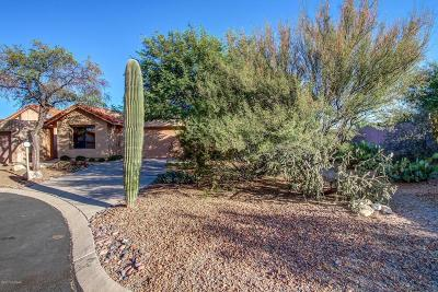 Oro Valley Single Family Home For Sale: 321 E Highcourte Lane