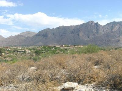 Tucson Residential Lots & Land For Sale: 5403 N Placita Gato Montes #28