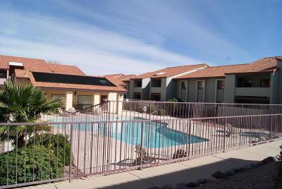 Tucson Condo For Sale: 2182 N Pantano Road #133