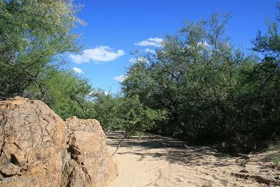 Sahuarita Residential Lots & Land For Sale: No Address