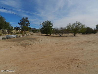 Residential Lots & Land For Sale: 11755 W Dusty Rocks Lane