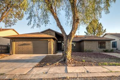 Tucson Single Family Home For Sale: 10249 E Sky Castle Way