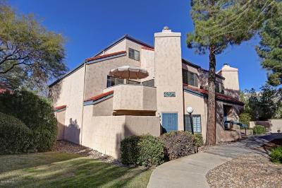 Tucson Condo For Sale: 4279 N River Grove Circle #224