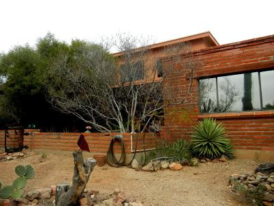 Tucson Single Family Home For Sale: 2280 N El Moraga Drive