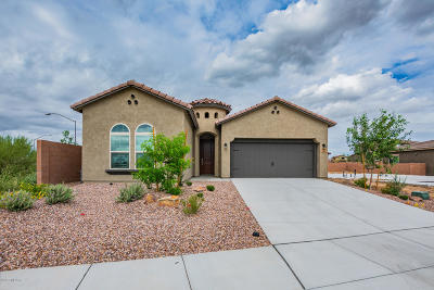 Oro Valley Single Family Home For Sale: 169 E Brookdale Way