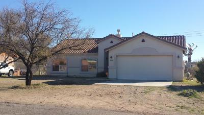 Single Family Home For Sale: 407 Willow