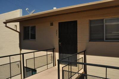 Pima County Condo For Sale: 1776 S Palo Verde Avenue #M207