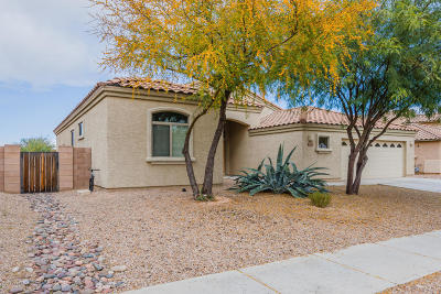 Pima County Single Family Home For Sale: 6600 S Lantana Vista Drive