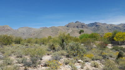 Tucson Residential Lots & Land For Sale: 7115 N Corrida De Venado #8