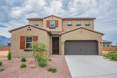 Oro Valley Single Family Home For Sale: 168 E Woolystar Court