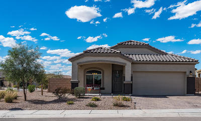 Marana Single Family Home For Sale: 8990 W Cloudwood Drive