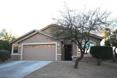 Tucson Single Family Home For Sale: 3409 S Desert Motif Road
