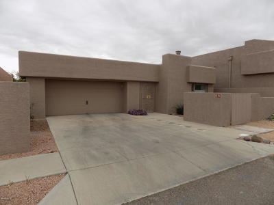 Pima County Single Family Home For Sale: 126 S Shadow Creek Place