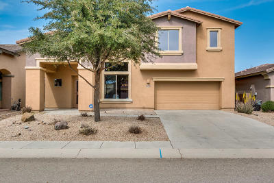 Pima County Single Family Home For Sale: 857 E Deer Spring Canyon Place