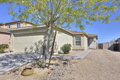Sahuarita Single Family Home For Sale: 1102 W Calle Del Libro Dorado