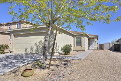 Pima County Single Family Home For Sale: 1102 W Calle Del Libro Dorado