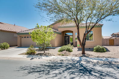 Marana Single Family Home For Sale: 11893 W Ferndown Drive