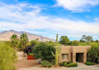 Tucson Single Family Home For Sale: 779 W Panorama Road