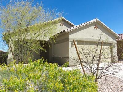 Tucson Single Family Home For Sale: 7447 S Salt Water Drive