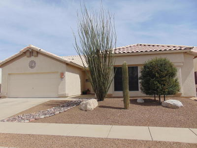 Tucson Single Family Home For Sale: 1057 S Suncove Drive
