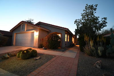 Tucson Single Family Home For Sale: 5236 W Wood Owl Drive