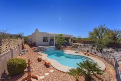 Tucson Single Family Home For Sale: 2462 S Placita Carrasco