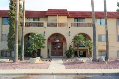 Tucson Condo For Sale: 6302 N Barcelona Lane #616