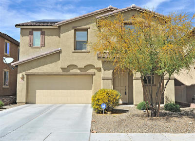 Sahuarita Single Family Home For Sale: 14439 S Camino El Galan