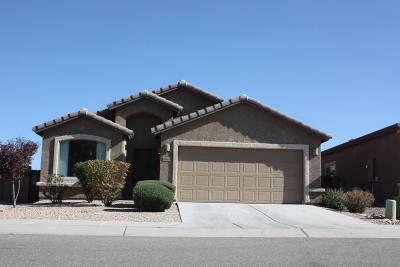 Tucson Single Family Home For Sale: 8939 S Cedarbrook Lane