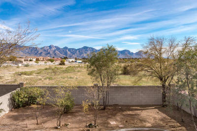 Tucson Single Family Home For Sale: 60223 E Verde Vista Court
