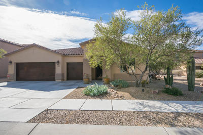 Marana Single Family Home For Sale: 4361 W Windsor Ranch Place
