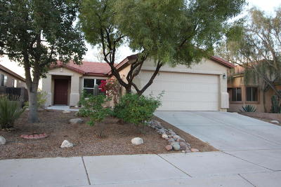 Tucson Single Family Home For Sale: 3451 W Sagebrush Hills Court