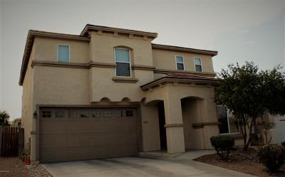 Tucson Single Family Home For Sale: 5681 W King Snake Drive