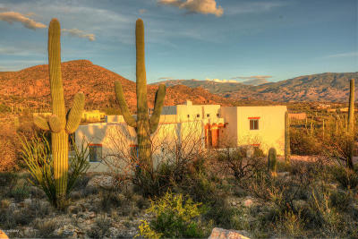 Tucson Single Family Home For Sale: 4070 N Larkspur Road