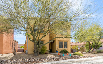 Tucson Single Family Home For Sale: 5101 S Zenith Way