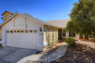 Tucson Single Family Home For Sale: 4367 W Hobby Horse Road