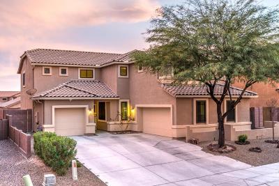 Oro Valley Single Family Home For Sale: 687 W Sonatina Lane