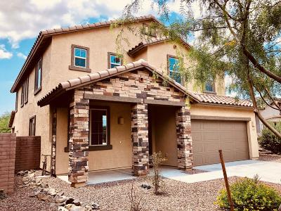 Oro Valley Single Family Home For Sale: 12979 N Camino Vieja Rancheria