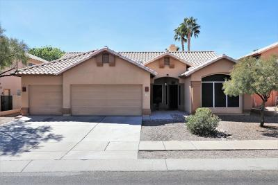 Oro Valley Single Family Home For Sale: 11265 N Seven Falls Drive