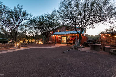 Tucson Single Family Home For Sale: 4350 S Century Road