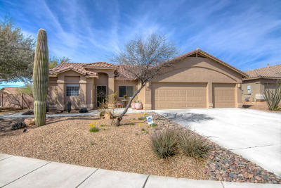 Marana Single Family Home For Sale: 12837 N Suizo Court