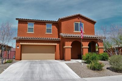 Tucson Single Family Home For Sale: 11373 E Fleeting Sunset Trail