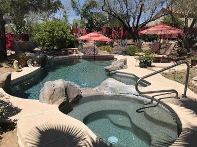 Oro Valley Single Family Home For Sale: 11481 N Copper Creek Drive