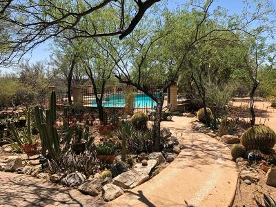 Tucson Single Family Home For Sale: 3025 N Soldier Trail