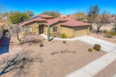 Tucson Single Family Home For Sale: 3479 N Reed Basin