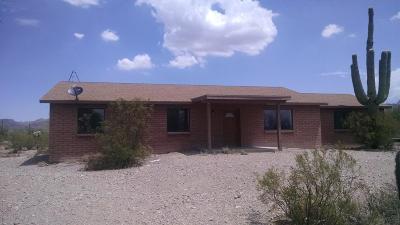 Tucson Single Family Home For Sale: 9712 W Calle Anasazi