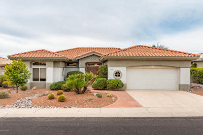 Pima County Single Family Home For Sale: 14559 N Lost Arrow Drive